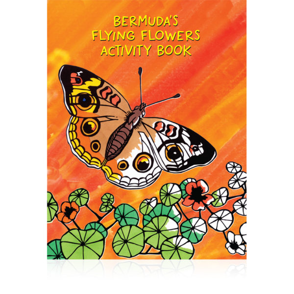 Bermuda Butterflies For Kids